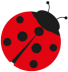 ladybird-crop